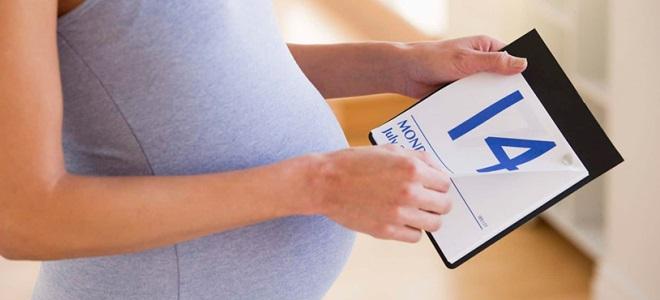 определить_срок_беременности