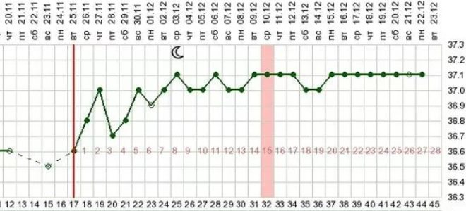 как измерять базальную температуру для определения овуляции