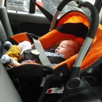 переноска для новорожденных в машину