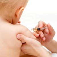 календарь прививок новорожденным