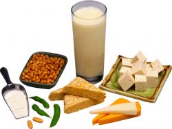 продукты для беременных содержащие кальций