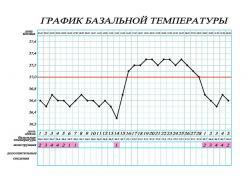 как измерять базальную температуру для выявления овуляции