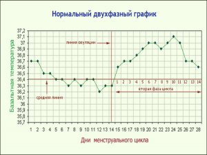 график базальной температуры 1