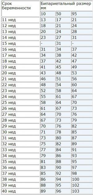 бпр плода таблица